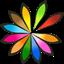 LinuxLive USB Creator icon