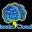 brainCloud icon