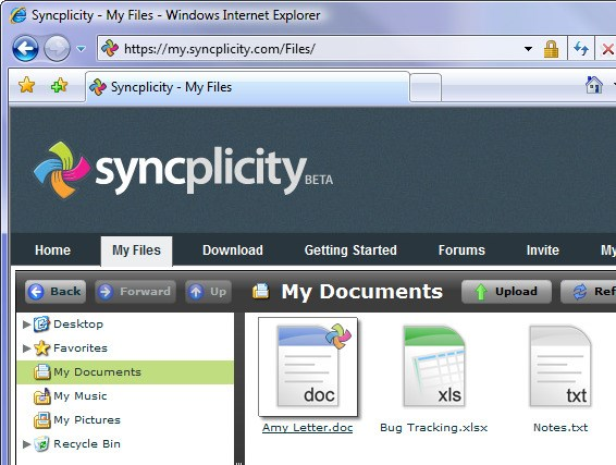 Syncplicity screenshot 0