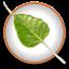 Bodhi Linux icon